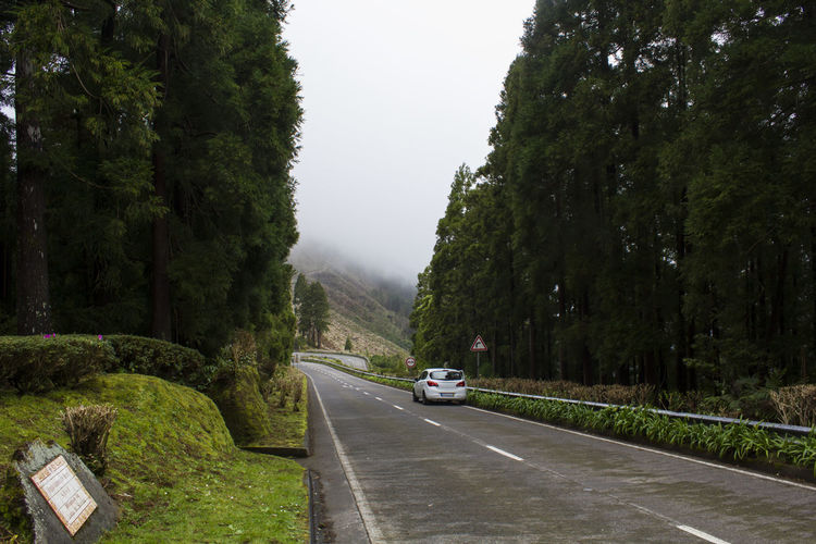 Road trip on mountain road with fog Rural Scenic Trip Car Day Direction Environment Fog Foggy Forest Hill Journey Landscape Mountain Nature No People Outdoors Road Road Trip Route Sinuous Travel Destinations