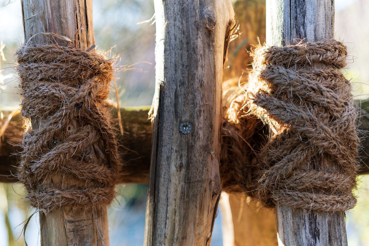 Close-up of rope tied to wooden post