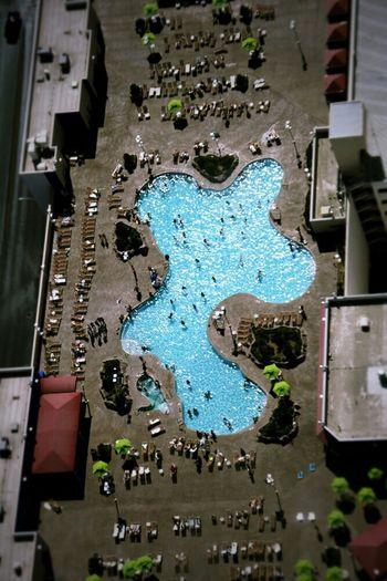 Swimming Pool in Las Vegas Dizzy!!!!!!!!!!!! Still Summer