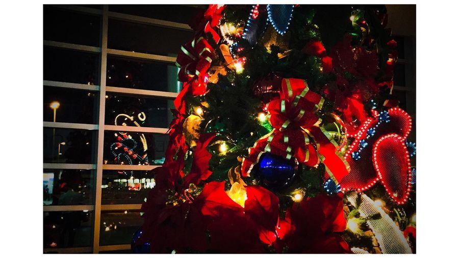 Christmas Tree Prphotoproject Feliznavidad Puerto Rico Meganvazquezphoto Puertoricotourism Turismodepuertorico Discoverpuertorico Photography Bayamon