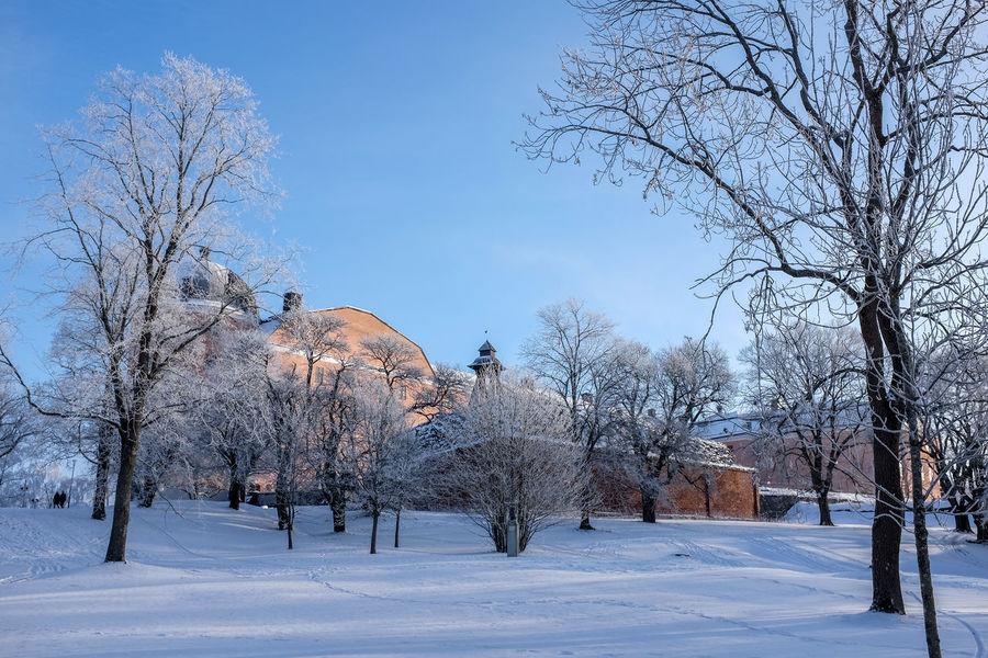 Castle Sweden Uppsala Uppsala Castle Uppsala, Sweden Winter Beauty In Nature Bluesky Cold Temperature Landscape Outdoors Snow Tree Winter