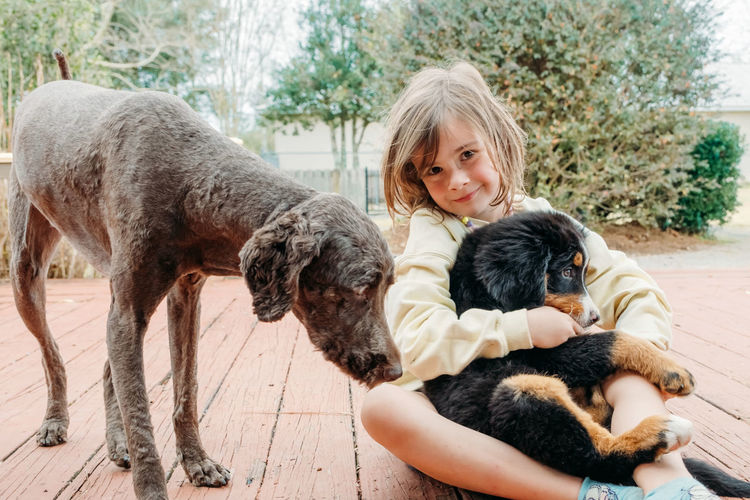Dogs. concept of love to animals and friendship with pets cute child girl sitting with domestic dogs
