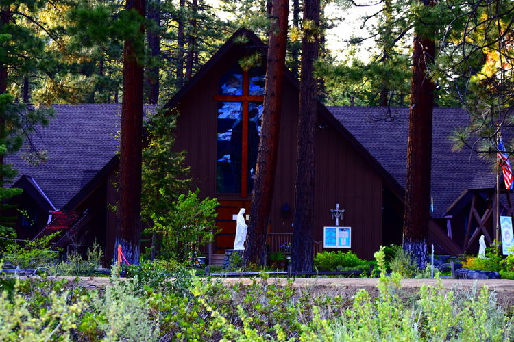 Catholic Church Next to our resort. For some reason I fell for the Rustic charm it has. Not your traditional Catholic Church. Architecture Beauty In Nature Catholic Church Church Cross Forest Lake Tahoe Nature Original Experiences Outdoors Rustic Rustic Charm Rustic Style Tranquility Virgin Mary