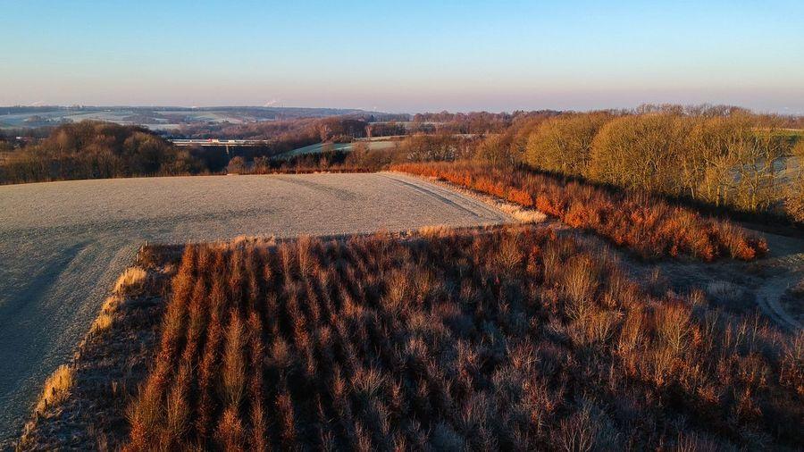 Frosty fields,