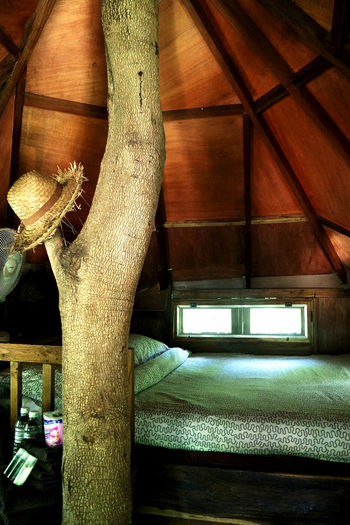 Architecture Bed Close-up Day Hat Home Interior Indoors  No People Resort Thailand Tree Tree Trunk Treehouse Window