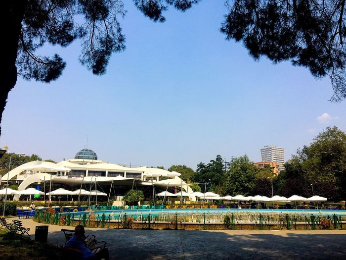 Riniapark Tiranacity Capital Cities  Tree Built Structure Outdoors Nature