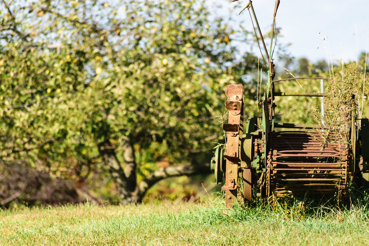 Autumn Farm Machine Tractor Beauty In Nature Close-up Day Farm Equipment Field Focus On Foreground Grass Green Color Growth Mammal Nature No People Outdoors Sky Tree