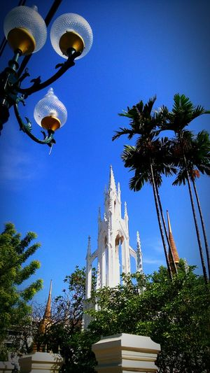 Tree Religion Low Angle View Blue Sky Place Of Worship Clear Sky Architecture Outdoors Outdoor Photography Travel Destinations Travel Buddha Temple, Thailand Buddha Temple Architecture