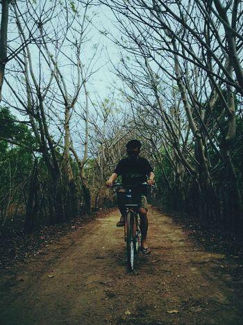 Enjoying Life Bikecycle Holliday Island #paradise