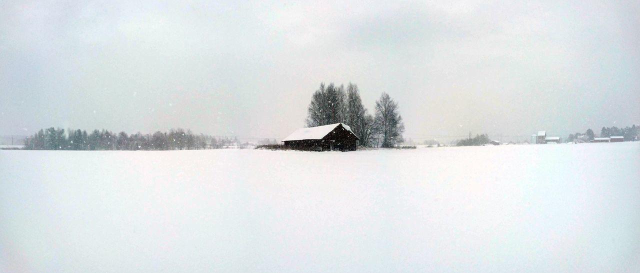 Snowing November Norrland Sverige Hälsingland Sverigebilder Weather Outdoors Nature Agriculture Landscape Tranquility Middle Of Sweden Scenics Tranquil Scene