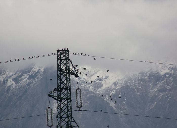 Bird Birds Birds On Cable Cable Cloudy Sky Connection Electricity Pylon High Tension Lines Many Birds Mountains No People Outdoors Sky