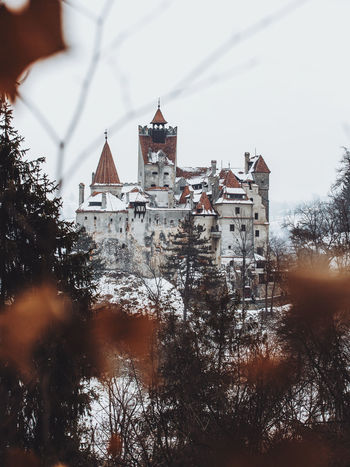 Castle Nature Winter Architecture Bare Tree Branch Building Building Exterior Buildings Built Structure Cold Temperature Day Dracula's Castle Landscape Leaf Nature Nature_collection No People Outdoor Photography Outdoors Sky Snow Travel Destinations Tree Winter