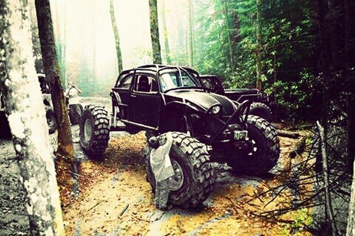 Cars Redneck Funnn