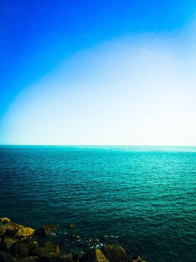 Horizon Over Water Blue Sea Water Scenics Tranquil Scene Beauty In Nature Tranquility Copy Space Seascape Clear Sky Nature Shore Calm Day Summer Non-urban Scene Outdoors Tourism Vacations