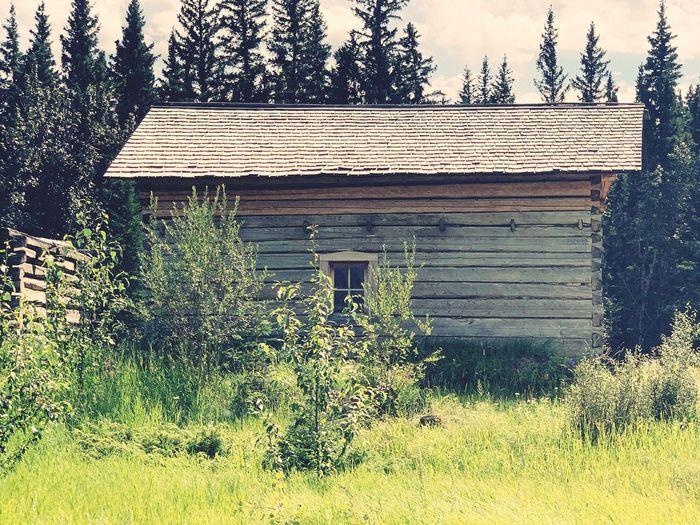 1905 cabin