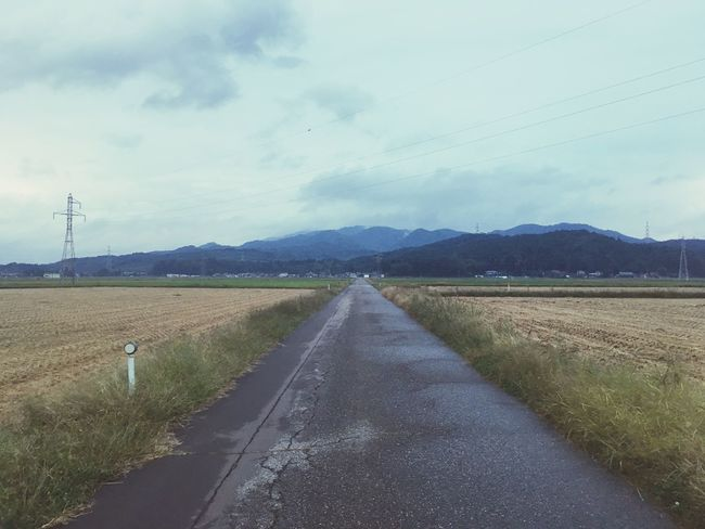 There is nothing special. Just Beautiful Nature Paddy Field Road Working Love Hometown Shibata Japan Photography The Scenery That Tom Saw Tomの見た世界 IPhoneography