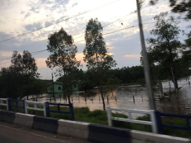 Tudo alagado!!! Rio Gravataí