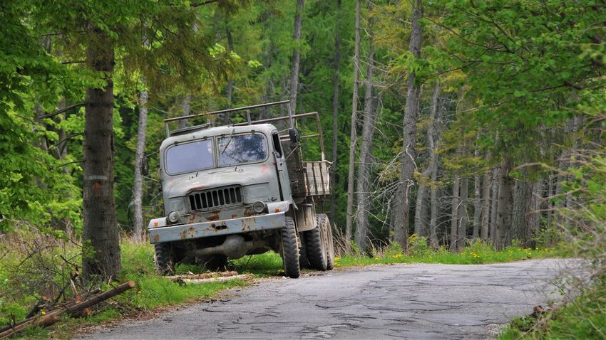 Slovakia Day Forest Full Frame Military Truck No People Road Street Transportation Tree Truck