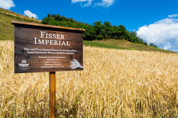 Agriculture Austria Beer Fisser Imperial Barley Barley Field Beer Ingredients Brewing Cloud - Sky Communication Day Environment Field Grass Growth Information Information Sign Land Landscape Nature No People Plant Rural Scene Sign Sky
