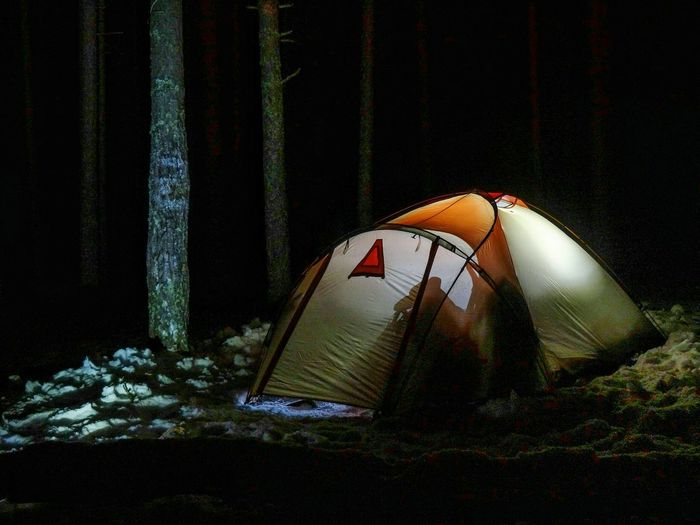 Travel Forest Лес Night Dark Tent Camping Advanture палатка Winter