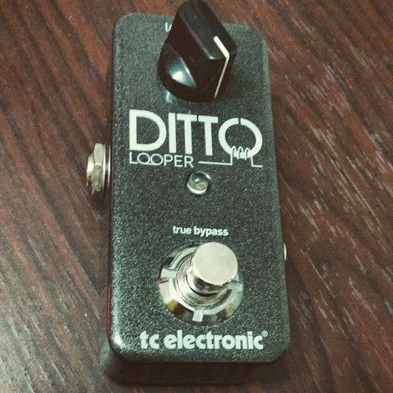 Dittolooper Cute Looper Pedalporn pedallove tcelectronic unlimitedlooping guitar love rock