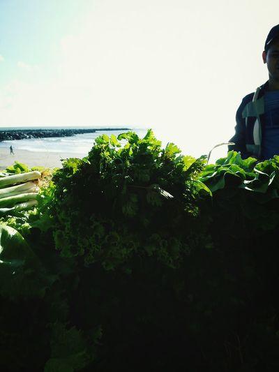 Organic Food First Eyeem Photo