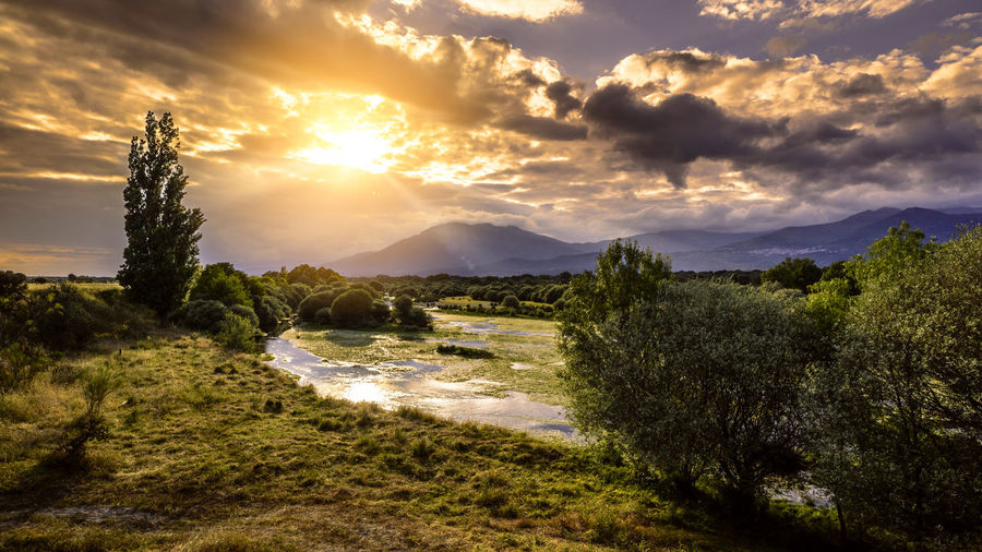Cloud Golden SPAIN Tietar Beauty In Nature Cloud - Sky Green Color Land Landscape Mountain Nature No People Plant River River Sunset Scenics - Nature Sky Sun Sunlight Sunset Tranquil Scene Tranquility Tree Water