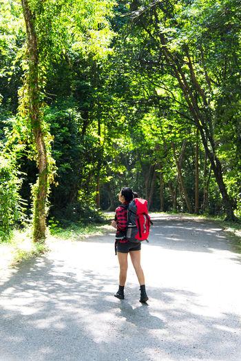Rear view of women walking on road along trees