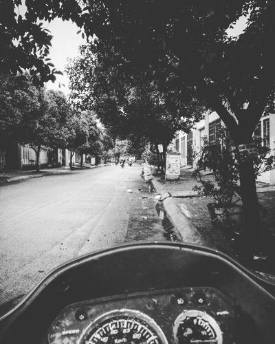 It was always beautiful from the start Rain Rainy Day Blackday Trees And Sky Street