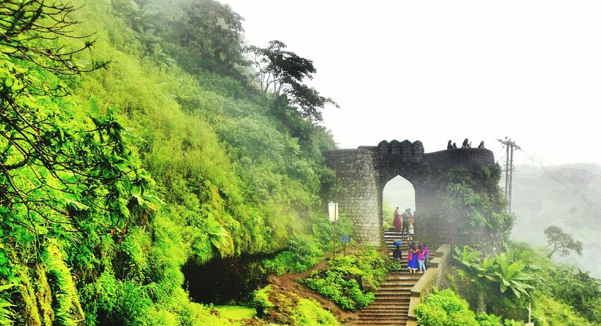 Greenery Trees EyeEm Nature Lover Fort Green Nature EyeEm Best Edits Nature Photography EyeEm Best Shots Entranceway Sinhgad Historical Place Sinhgadfort Gateway Mountain Best Clicks