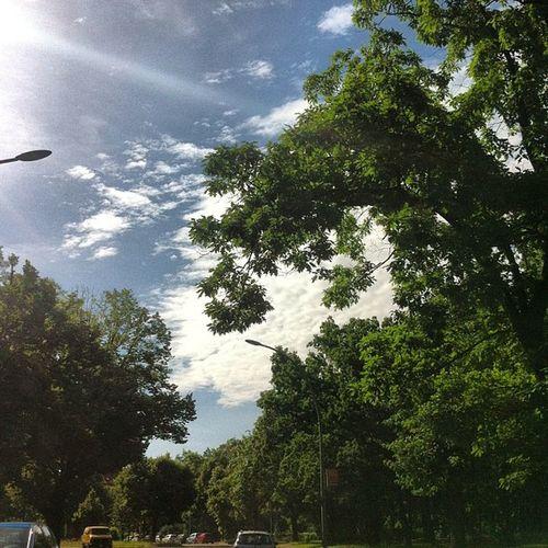 Bugün müthiş hoş bir hava var... Berlin...