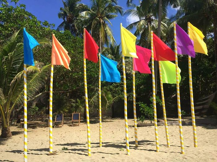 Colorful Flags At Beach