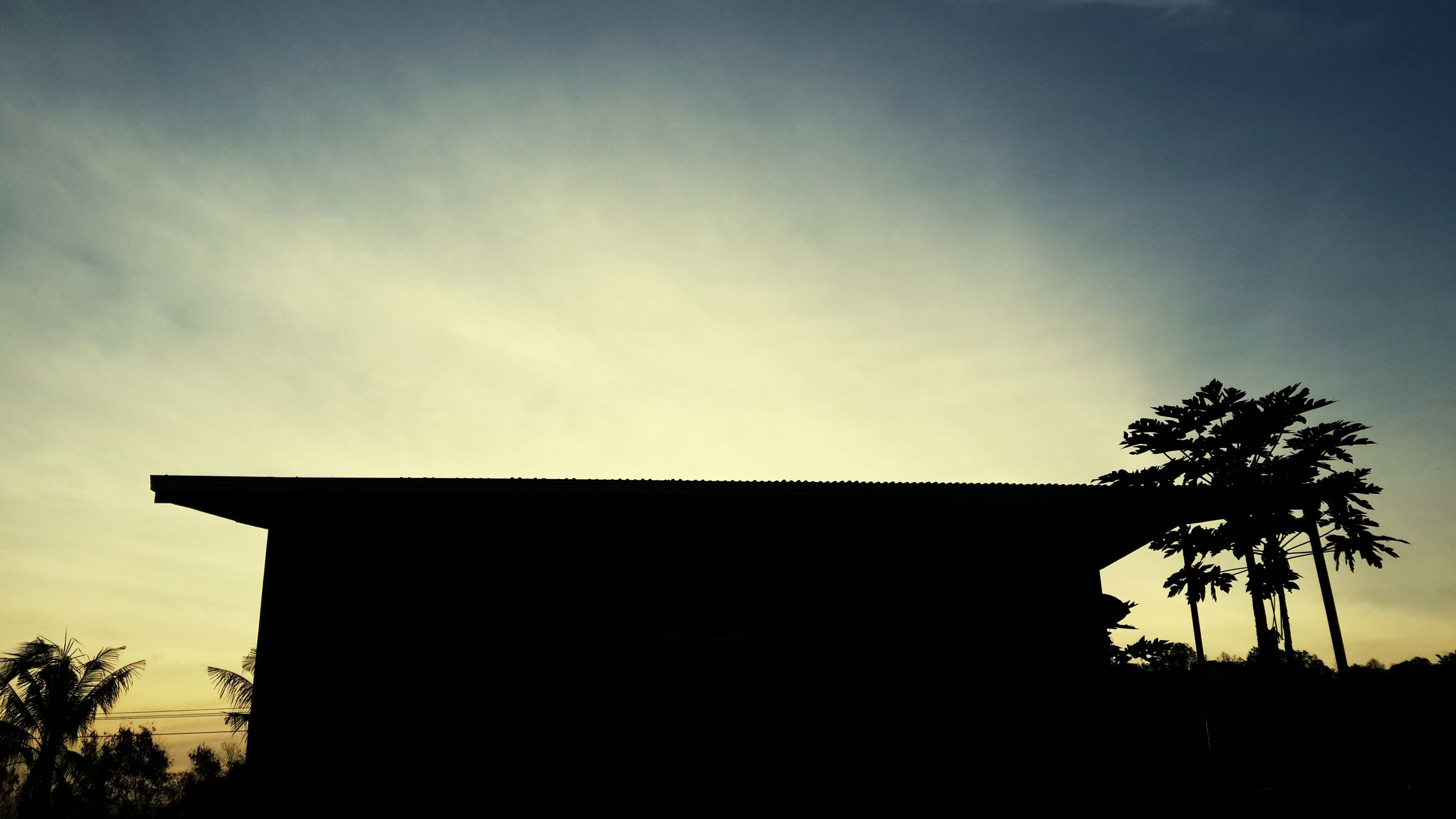 silhouette, low angle view, sky, sunset, tree, built structure, architecture, building exterior, cloud - sky, cloud, tranquility, nature, dusk, beauty in nature, copy space, scenics, house, outdoors, tranquil scene, no people