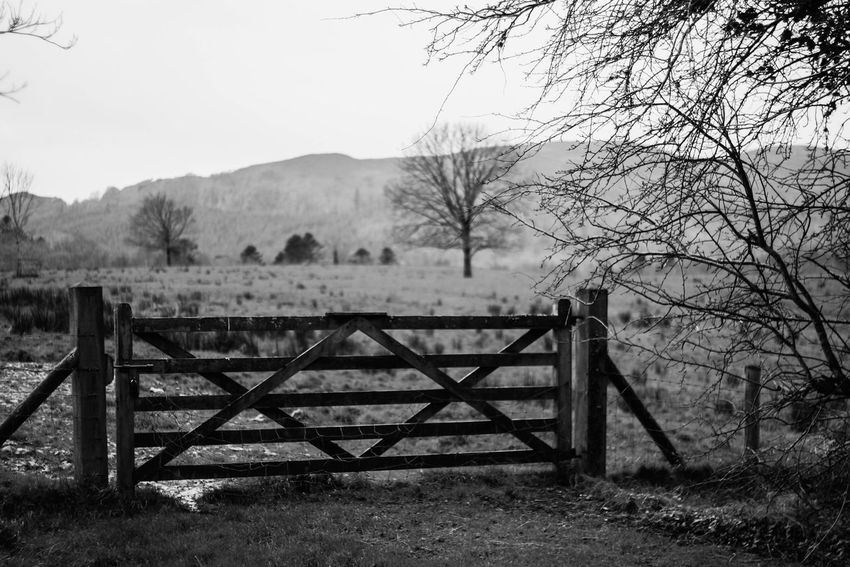 I like gates, rugby and alcholism. Wordsofwisdom Profound Gate Blackandwhite EyeEm Best Shots - Black + White Nature On Your Doorstep EyeEm Nature Lover Eye4photography  Love ♥ Monochrome Taking Photos Photography Is My Escape From Reality! Perfection Is Always Frowned Upon From My Point Of View Showcase: February Atmospheric Mood Nature_collection
