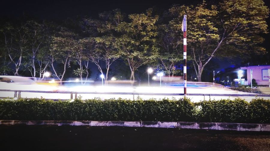 Quận 4. a lê lế Tree Illuminated Water Spraying Sky High Street Light Painting Roadways