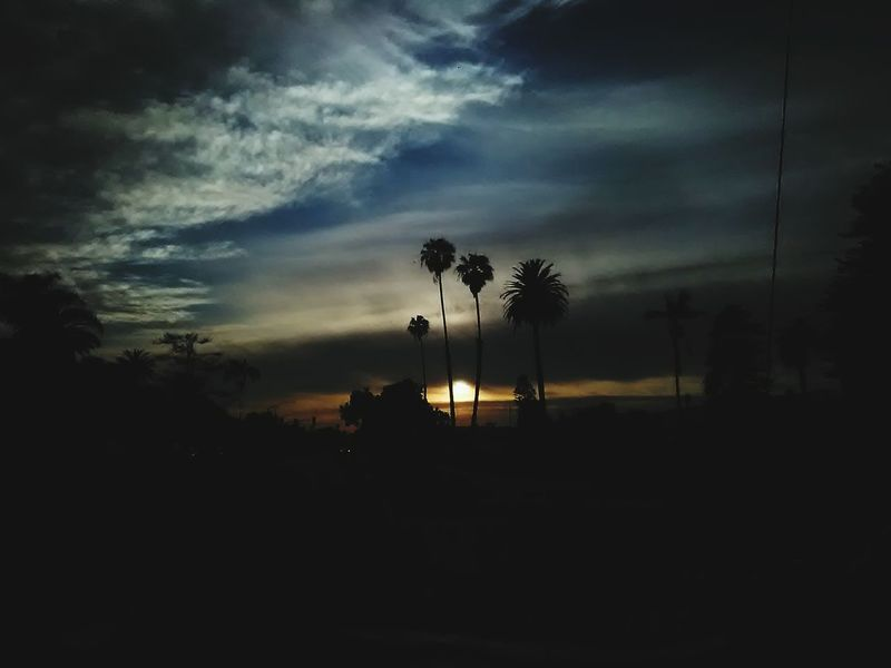 Downtownventura Visitventura Ventura Sunlight Sunset_collection Sunbeam Sunny Daughtersareawesome Sun Sky And Clouds Skylovers Sky Photography Sky Collection Beach Sunset #sun #clouds #skylovers #sky #nature #beautifulinnature #naturalbeauty #photography #landscape Sky Silhouette Cloud - Sky Night Tree Environment Dark Transportation Scenics - Nature Lighting Equipment Illuminated No People Dusk Outdoors Nature Tranquility Beauty In Nature Sunset Plant Adventures In The City Going Remote Focus On The Story EyeEmNewHere EyeEmNewHere #FREIHEITBERLIN Plastic Environment - LIMEX IMAGINE The Architect - 2018 EyeEm Awards The Fashion Photographer - 2018 EyeEm Awards The Portraitist - 2018 EyeEm Awards The Great Outdoors - 2018 EyeEm Awards The Street Photographer - 2018 EyeEm Awards The Traveler - 2018 EyeEm Awards The Photojournalist - 2018 EyeEm Awards The Still Life Photographer - 2018 EyeEm Awards Modern Hospitality The Creative - 2018 EyeEm Awards Creative Space Love Is Love World Cup 2018 10