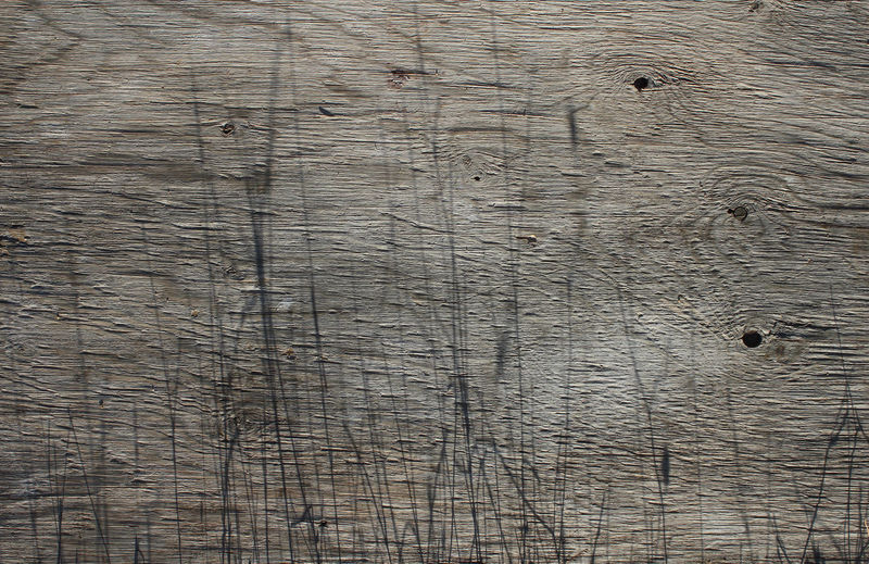 Board Old Rough Shadows Surface Textured  Textures And Surfaces Wet Wood