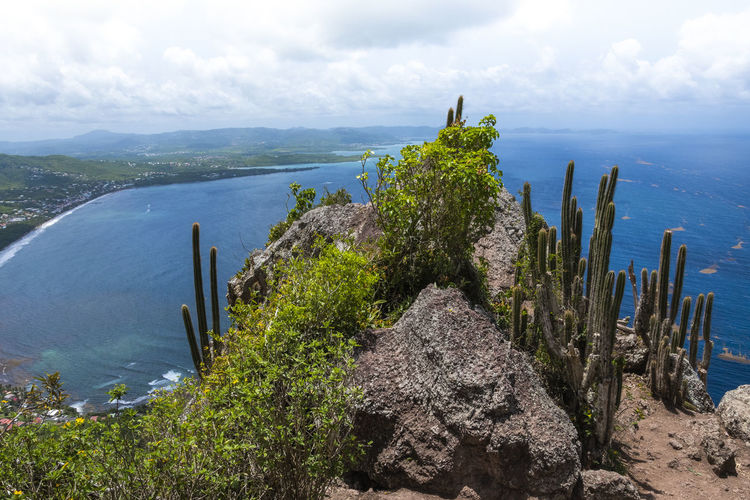 Morne Larcher, Martinique Hiking Martinique Martinique Island Walk Beauty In Nature Cloud - Sky Day Environment Horizon Over Water Landscape Mountain Nature No People Outdoors Plant Rock Scenics - Nature Sea Sky Tranquil Scene Tranquility Tropical Climate Water