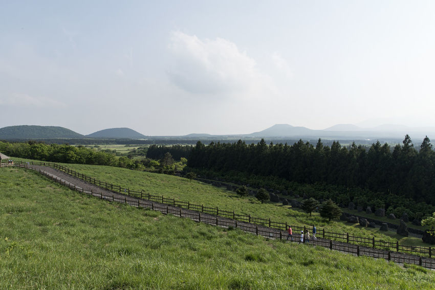 view of Sangumburi, a dormant volcano crater in Jeju Island, South Korea Agriculture Beauty In Nature Cloud - Sky Crater Day Dormant Volcano Farm Field Grass Growth JEJU ISLAND  Landscape Mountain Mountain Range Nature No People Outdoors Rural Scene Sangumburi Scenics Sky Tranquil Scene Tranquility Tree