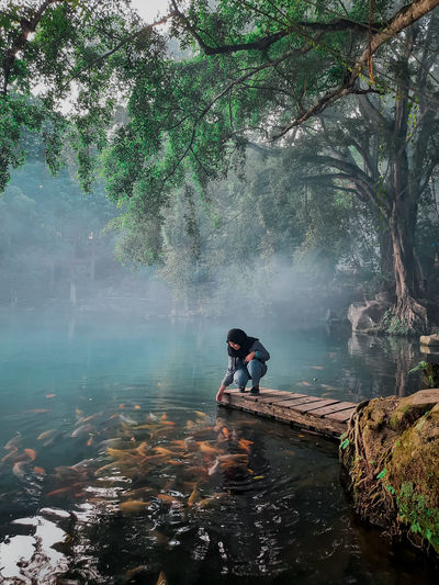 Man in lake by trees in forest