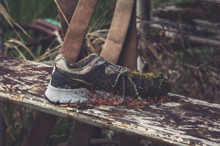 Return to Nature. Abandoned Close-up Day Expired Focus On Foreground Last Stop Left Behind Nature No People Out Of The Box Outdoors Overgrown Return To Nature Rotting Away Rusty Shoe Sneaker Sneakers The Week On EyeEm What's Your Story? Where Have You Been Wood - Material Worn Worn Out