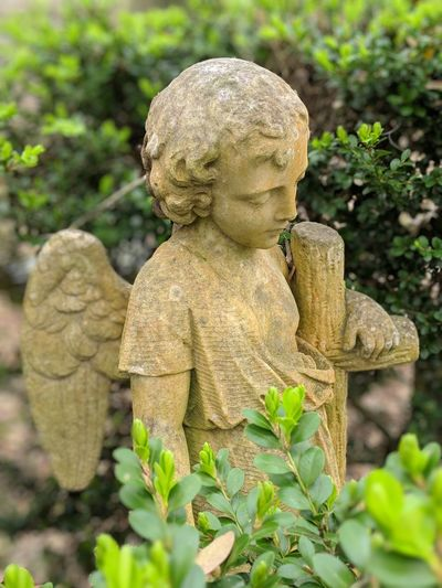 Close-up of angel statue in cemetery