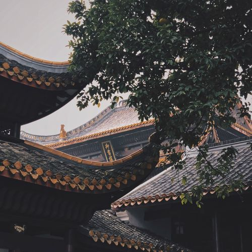 Architecture Built Structure Building Exterior Roof Tree Eaves Traditional Building