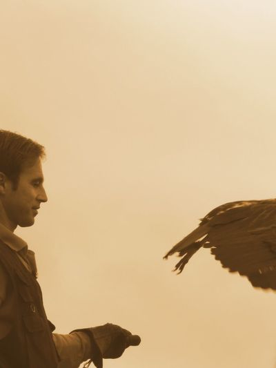 Bird In Motion Eagle Feathers Flighing Away Man One Person Sepia Wing EyeEmNewHere