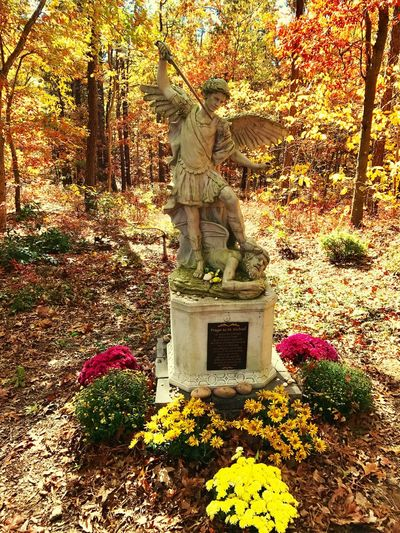 St.Michael-DefendUsInBattle Nature Tree Outdoors Tranquility Long Island, Ny Our Lady Of The Island Shrine St. Michael Archangel