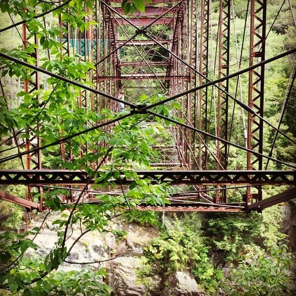 abandoned bridges. Cool. Abandoned Deterioration Obsolete Damaged Greenery Railway Bridge Railroad Bridge Run-down Rusty Weathered Ruined Broken Flora Foliage Bad Condition Railroad