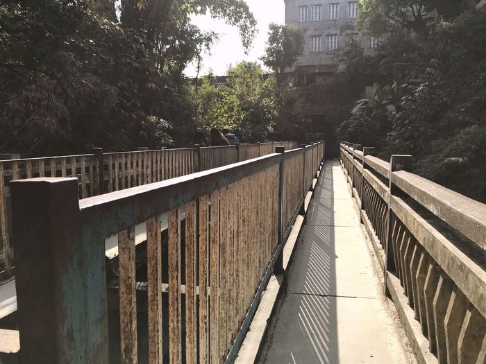 Railing Tree Built Structure Architecture Day Bridge - Man Made Structure Outdoors No People Footbridge Building Exterior Growth Nature Sky City