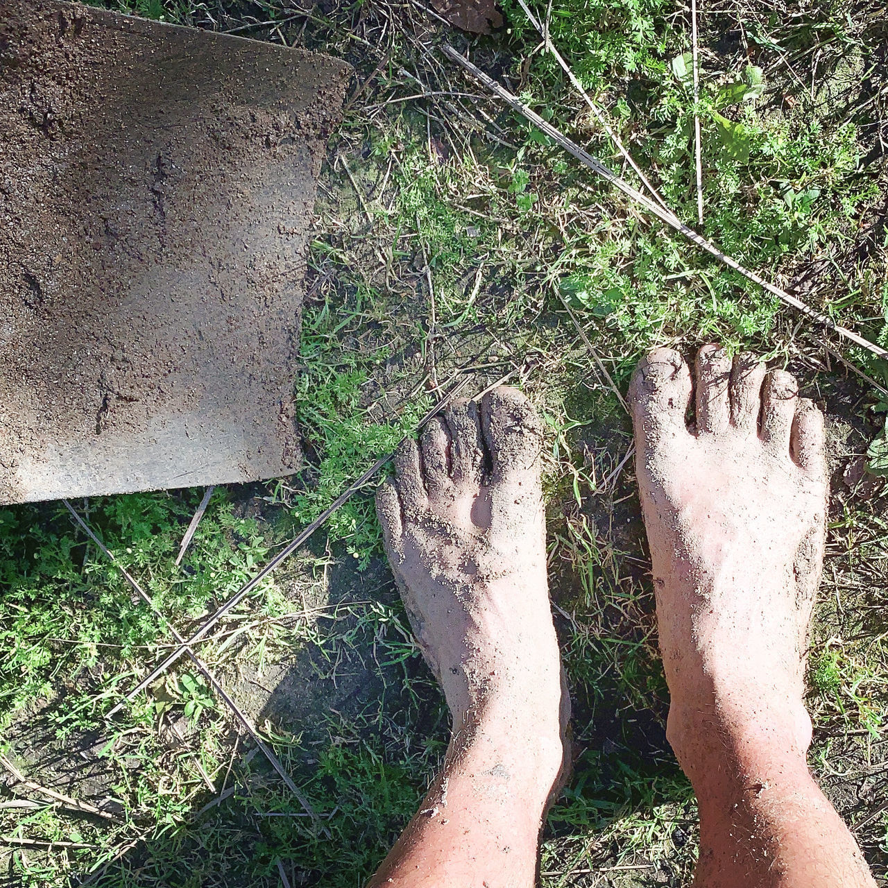 human body part, low section, human leg, body part, barefoot, one person, personal perspective, land, plant, human foot, nature, real people, day, dirt, high angle view, relaxation, outdoors, unrecognizable person, lifestyles, dirty, messy, human limb
