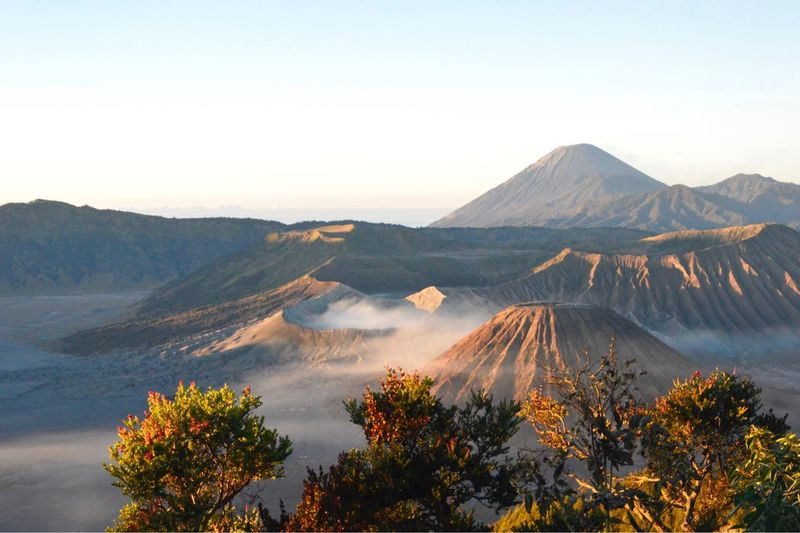 Bromo Mountain Mountain Sky Scenics - Nature Beauty In Nature Tree Plant Tranquil Scene Landscape Nature Travel Destinations Clear Sky Mountain Range