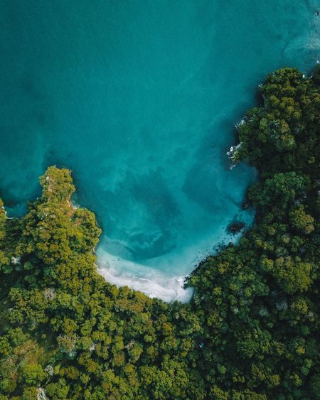 Dreaming green and blue. Drone  Tree Plant Water Beauty In Nature Tranquility Tranquil Scene High Angle View Nature Sea No People Outdoors Aerial View